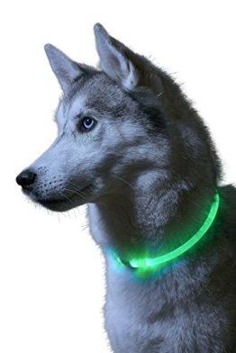 Auraglow Superhelles, leuchtendes LED Hundehalsband