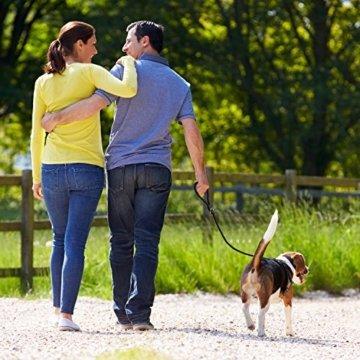 BELISY hochwertige Hundeleine – 1,70 Meter Lang