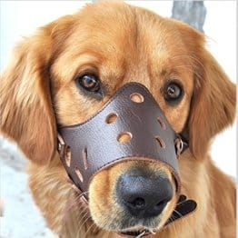 Easylifer, verstellbarer Hundemaulkorb aus Leder