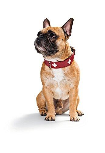 Hunter Hundehalsband Swiss aus Leder, rot/schwarz