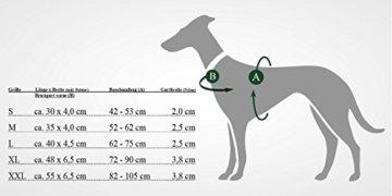 Hunter Laufgeschirr für Hunde , rot/schwarz