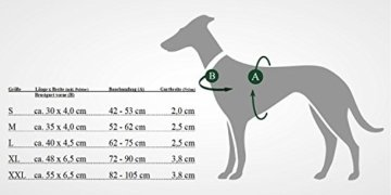 Hunter Norwegergeschirr für Hunde Racing, braun/cognac Gr. L