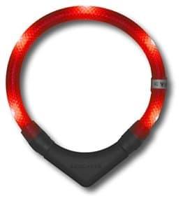 LED Hundehalsband LEUCHTIE  Rot