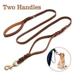 Leder Hundeleine mit 2 Griffen für große, mittelschwere Hunde