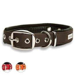 PetTec Hundehalsband aus Trioflex mit Polsterung in Braun