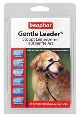 Trainings-Halsband für Hunde
