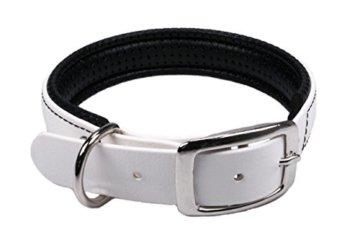 Weißes BioThane Halsband mit Dornschnalle